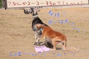 Kid_0134_r