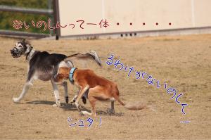 Kid_0136_r